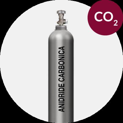Anidride carbonica e vino, dalla vigna alla fermentazione