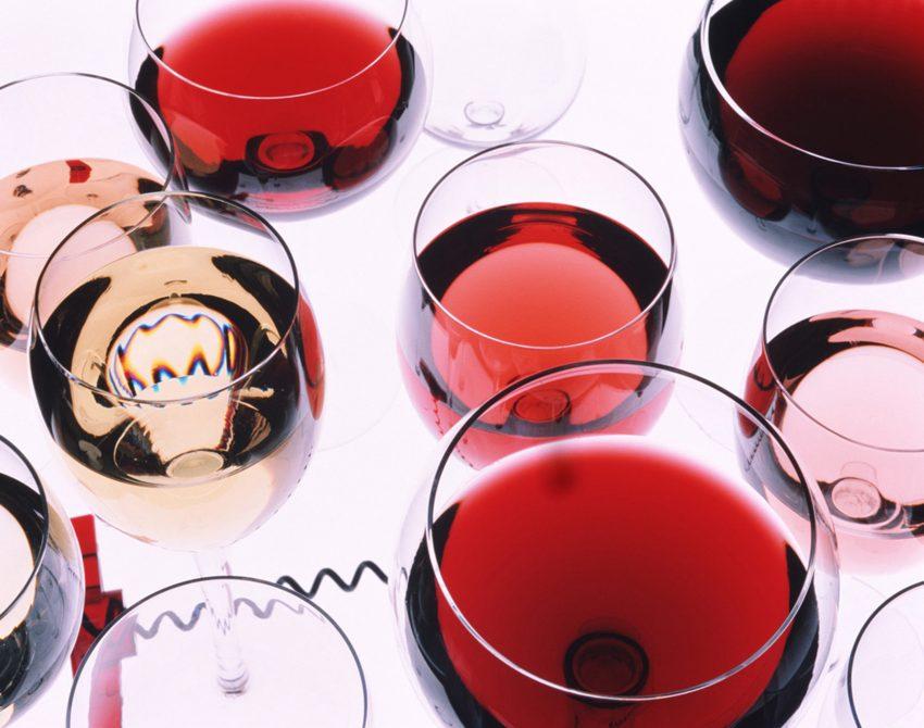L'arte del buon vino: SIAD per l'enologia